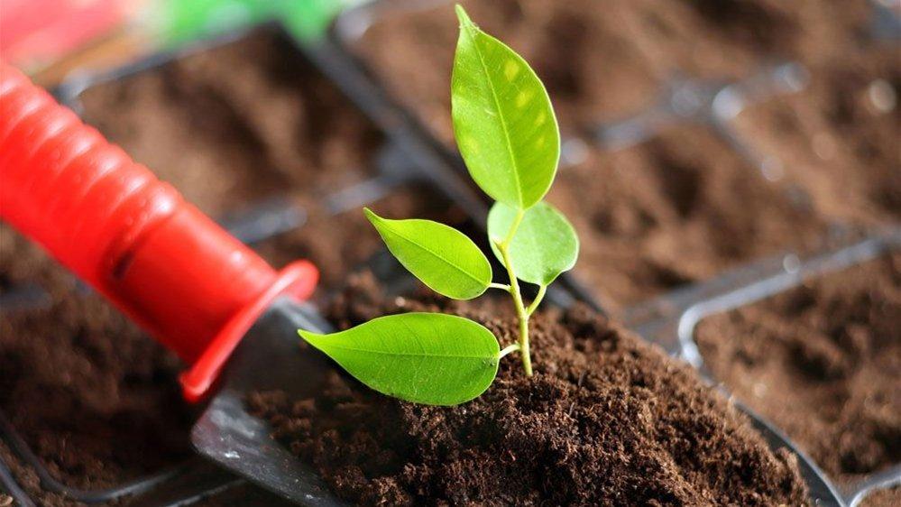 土壤检测报告公示